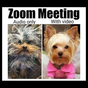 Tops - Are you ready for your Zoom Meeting?